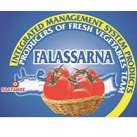 "The producers team ""FALASSARNA"""