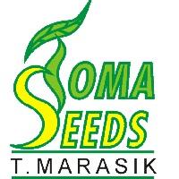 TOMA SEEDS Tomasz Marasik